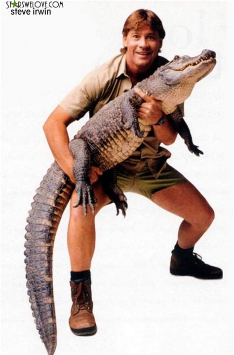 The Purple Quill   The Crocodile Hunter lives on