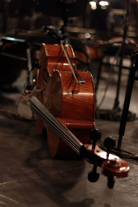 Violoncello - Violoncello instrument at a concert, laying